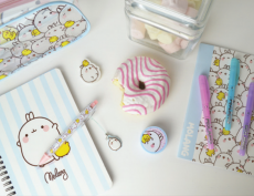 MILLIEIMAGES | Ballpoint Pen With Dangler ★ Molang